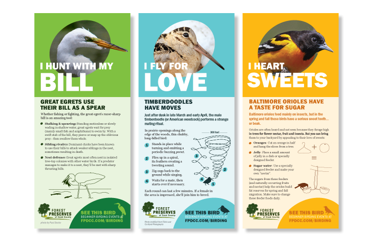 Bird of the Month Cards 1