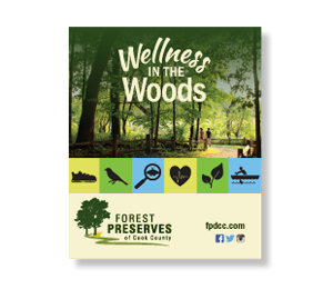 Wellness in the Woods